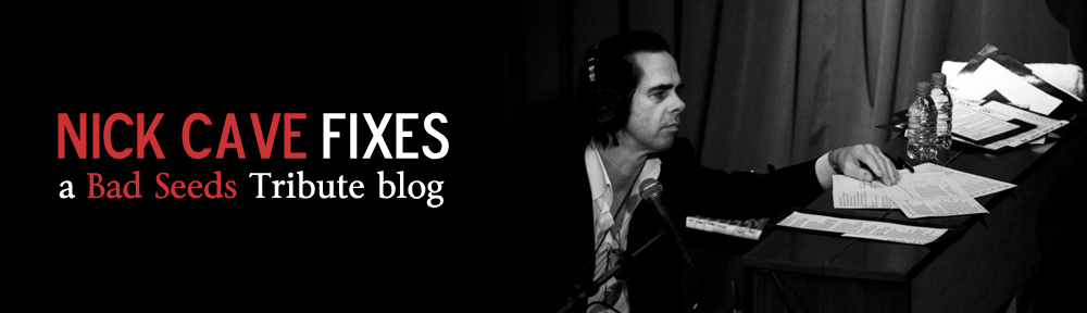 Nick Cave Fixes